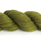 13 Moss